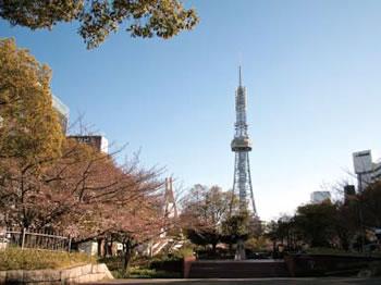 TV Tower Plaze